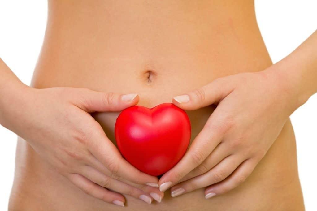 Физиология женского тела